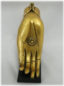 仏陀の手(来迎印らいげいいん)