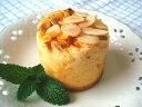 【無添加】 ごろごろ林檎のヨーグルトのケーキ【ドッグフード ...