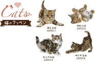 【NEW】Catsワッペンシール/アイロン接着両用タイプ