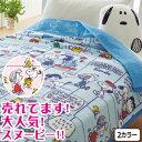 西川 タオルケット SP193 コミックフレンズ・スヌーピータオルケットシングル:140×190cm