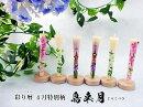 特別柄/6本入【彩り暦シリーズ】4月【鳥来月/とりくづき】