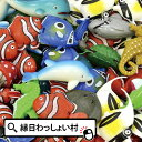 クマノミとお友達50個入り 景品 玩具 おもちゃ 縁日 お祭り イベント ランチ景品 子ども会 子供会 スーパーボール 魚 すくい用品 浮く お祭り問屋
