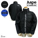 Ape01-151125-02-a