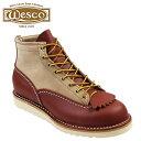 Wscc-lnrwbe1061010-a