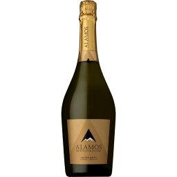 ■お取寄せ カテナ アラモス エクストラ ブリュット (シンラベル) [NV] [ 白 ワイン アルゼンチン メンドーサ ]
