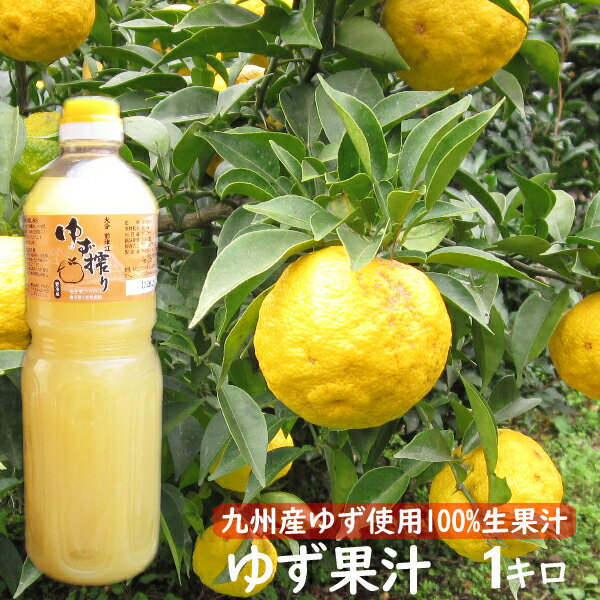 酢, 果実酢  100 1