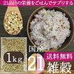 (送料無料)21穀米1キロ業務用21種雑穀米話題のβグルカンのもち麦も配合!食べやすくお得な業務用サイズの雑穀米です。