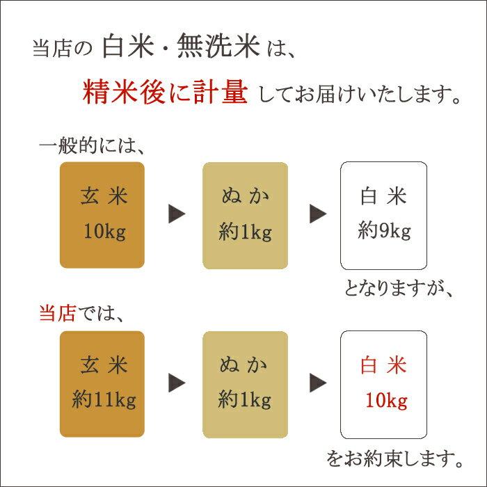 《新米》ゆめぴりか 白米 10kg(5kg×2...の紹介画像2