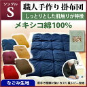 Kake_mex_nago_s