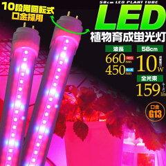2本以上ご購入で送料無料LED植物育成蛍光灯 58cm/10W 口金G13 水耕栽培ランプ 室内での植物や...