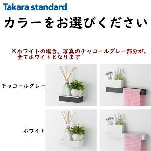 [MGSKコモノフックS(カラー)]タカラスタンダード[TAKARASTANDARD]小物置きS+フック【RCP】