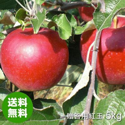 みちのく処 わっつど『青森県産りんご紅玉(こうぎょく) 贈答用』