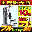TORUS4 ホームジム ホライズンフィットネス ジョンソンヘルステックジャパン トーラス4 トーラスフォー HOMEGYM パーソナルジム ホライゾンフィットネス HORIZONFITNESS johnson Health Tech Japan ポイント10倍 02P03Dec16
