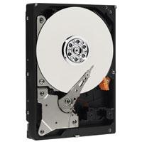 WD2500BB-55RDA0 Western Digital 250GB 3.5インチ/IDE/7200rpm WD Caviar【中古】