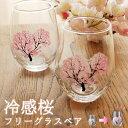 冷感桜 フリーグラス ペア 焼酎グラス おしゃれ ロックグラ