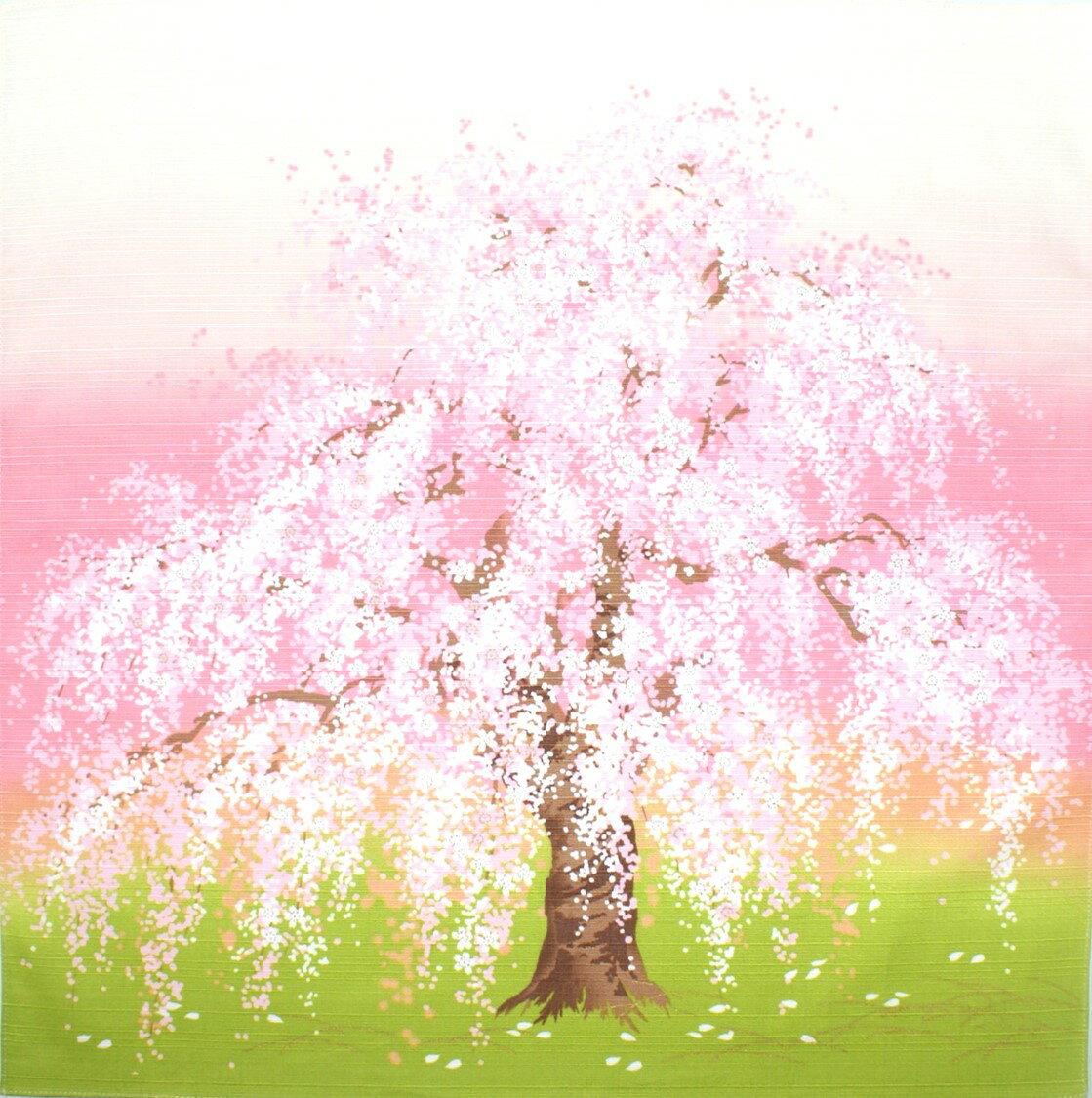 4月四季桜へ移動