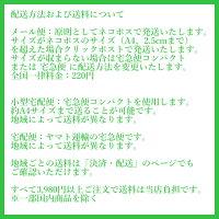 (在庫限り:再プレス未定)(CD/SACDHybrid)クニコ・プレイズ・ライヒ/演奏:加藤訓子(パーカッション)