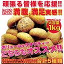 おから豆乳クッキー5種 どっさり1kg♪[おから豆乳ソフトク...