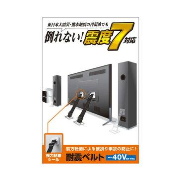 エレコム ELECOM TV用耐震ベルト 〜40V用 強力粘着シールタイプ 2本入 TS-001N2
