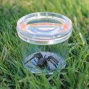 Learning Resources GeoSafari(R) Jr. Bug Viewer 昆虫拡大観察ケース EI 5111