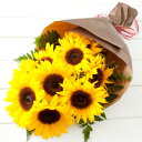 ぱっと明るくなる笑顔を届けたい!!生き生きとしたひまわりを贈りましょ♪●送料無料●サンフ...