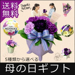 5種類から選べる母の日ギフト アレンジメント・花束はすべてムーンダスト入り。花言葉は「永遠の幸福」...