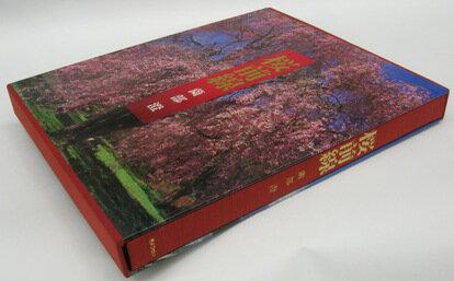 桜前線 薗部 澄 写真集 afb
