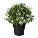 【IKEA/イケア/通販】 FEJKA フェイカ 人工観葉植物, タイム(c)(40375167)