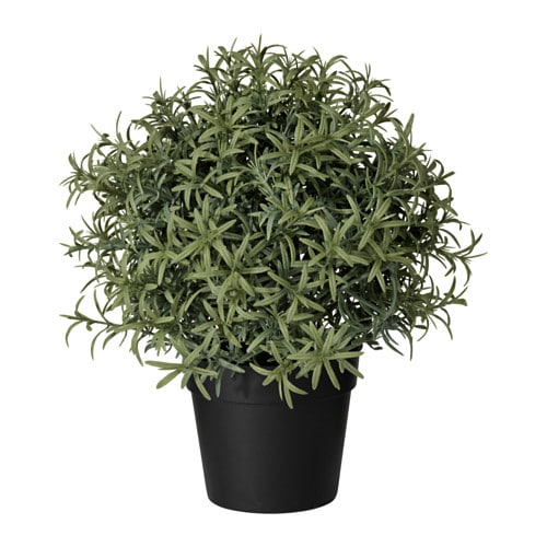 【IKEA/イケア/通販】 FEJKA フェイカ 人工観葉植物, ローズマリー(c)(40382115)