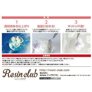 Resinclub(レジンクラブ)雪の結晶シール