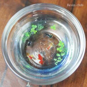 Resinclub(レジンクラブ)金魚アクセサリー