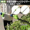 【送料無料】【着後レビューで10%クーポンGET】【充電器・...