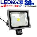 【送料無料】【最大2000円クーポン配布中】LED 投光器 30W 3...