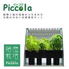 エスキュービズム通商室内で園芸が楽しめる家庭用水耕栽培キットピッコラ