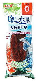 ジェックス 癒し水景 天然彩り草 レッド (1個) 水草 水槽用レイアウト 観賞魚用品