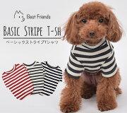 ベーシック ストライプ Tシャツ ポメラニアン マルチーズ トイプードル ドッグウェア ボーダー Bestfriends