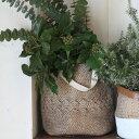 セメント バスケット ポット L CEMENT BASKET POT NATURAL L【ダルトン DULTON】鉢カバー 植木鉢 花壇 植物 ガーデン グリーン