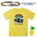 Crazy Shirts(クレイジーシャツ) S/S Tee @PINEAPPLE DYED[2009932] LUCKY HAWAII CAT クリバンキャット 半袖 Tシャツ HAWAII ハワイ ネコ パイナップル染め【RCP】ヴィンテージウォッシュ 大きめサイズ