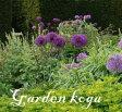アリウム パープルセンセイション 1球 中型 Allium Purple Sencation 【お届け中】 球根植え アリウム 球根 セット 鉢植え 庭植え 寄せ植え ガーデニング