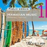 【店内音楽CD】Hawaiian music 1 - Papalina Lahilahi - (22曲 約68分)♪ハッピーな音楽 店舗・お店・施設・ショールーム・イベント・ショー・展示会 著作権フリー音楽 BGM CD  面倒な著作権処理不要