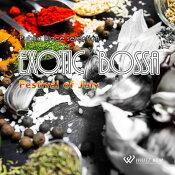 【商用音楽CD】ExoticBossa-FestivalofJuly-(14曲約60分)