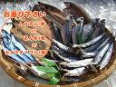 【送料無料】安くて美味しくて体に良い青魚セット♪[千葉県産]