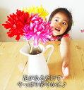 【IKEA】イケア通販【SOCKERART】花瓶 ホワイト 22cmの写真