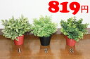 【IKEA】イケア通販【FEJKA】 造花鉢植え 人工観葉植物の写真