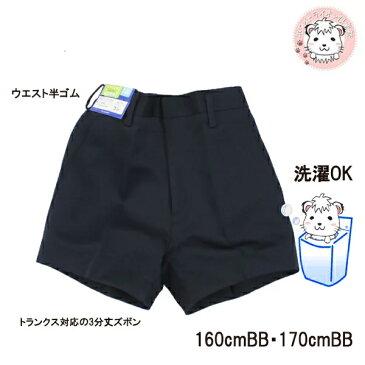 学生服 半ズボン BB体 5300