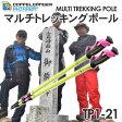 処分特価!DOPPELGANGER マルチトレッキングポール2本セット【TP1-21】