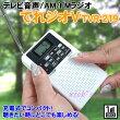 【送料無料】Bearmaxテレビ音声/AM/FMラジオてれジオV(TVR-219)