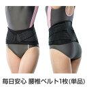 【送料無料】 腰痛ベルト 毎日安心腰椎ベルト 洗濯可 腰痛 サポーター 大きいサイズ 腰の痛み 腰痛 ...