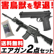 エアガン ピストル ライフル アメリカ トイガン