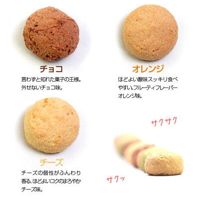 送料無料訳あり豆乳おからクッキー1kgお試しおからクッキーオカラクッキーダイエット食品クッキーダイエットクッキープチ断食個別包装豆乳クッキーダイエットフードダイエットクッキー低カロリーお菓子おからクッキー置き換え大量低糖質小腹人気制限